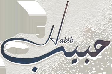 فيلم حبيب 2019